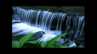 psaume de la création Vocal l