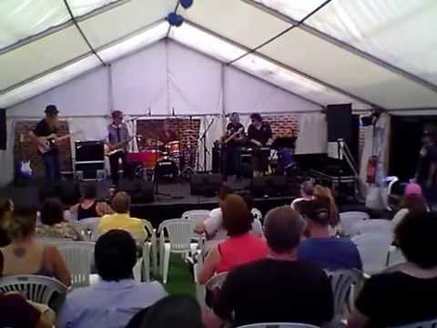 """""""Blues In Green"""" band at the Eltham Jazz Food and Wine Festival Feb 2015"""