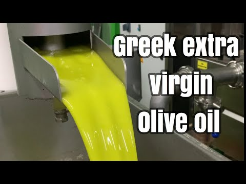 GREEK EXTRA VIRGIN OLIVE OIL...How to harvest olives- The complete process