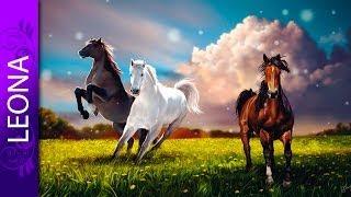 Как рисовать в фотошопе коней. Мастера фотошопа
