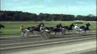 Gouden Zweep 1993 -Fulmar Jet