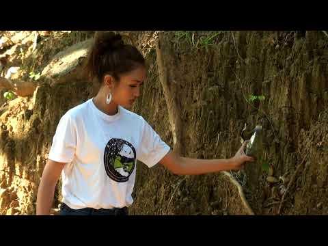 MISS MIZORAM: BWAP - T. Ramthanmawii