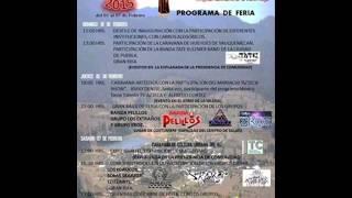 Propaganda 2015 de feria San Felipe Hidalgo Tlaxcala