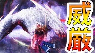 【MHF-Z実況】『極み駆けるナルガクルガ』【リベンジ】【モンハンフロンティアZ】