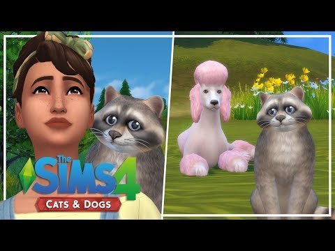 THIS IS IMPAWSIBLE // The Sims 4: Wolf Pack Challenge #3