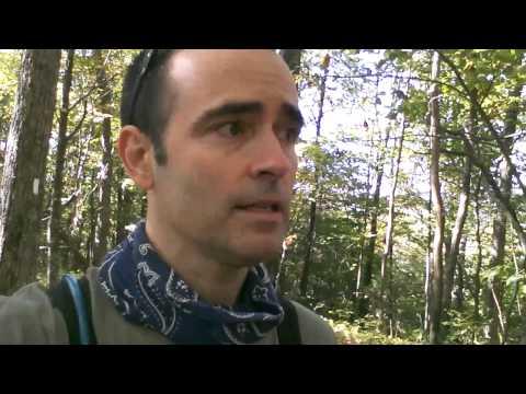 Silers Bald Hike Part 3