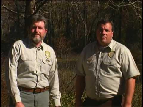 Forest Stewardship in Mississippi
