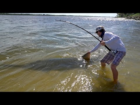 Gigantic 17ft Sawfish! - Ft. Chew On This, LunkersTV, Jon B & ApBassing - 4K