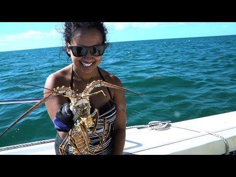 Florida Travel: How to Go Lobstering