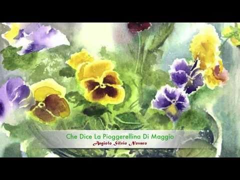 Fiorellin Del Prato Claudio Ranalli Che Dice La