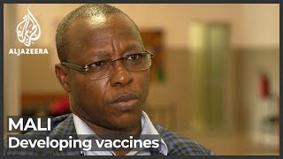 Mali scientists call for locally made inoculations