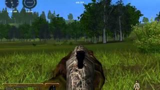 Hunting Unlimited 2009 Jive Turkey