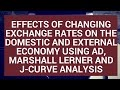 Effects of changing exchange rates on the domestic and external economy