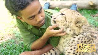 Cheetah and Keeper are best friends!