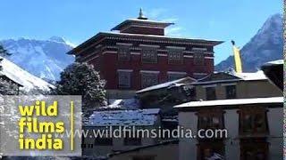 Tengboche Monastery or Thyangboche Monastery - Nepal