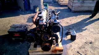 Старт двигателя D6BR с замерами давления масла(Автобус/Легковой/Грузовик/ Hyundai: Grace - D4BF D4BA D4BX.С электронным ТНВД, с механическим ТНВД. Starex - D4BH D4BB D4BF D4CD 145..., 2016-03-12T01:00:49.000Z)