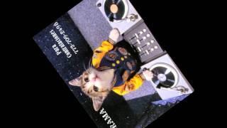 Armadillos mix-Dj Drama Najera