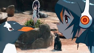 La historia de Grape-kun - Internet de luto