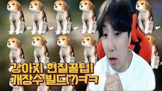 [검은사막m]강아지 현질 레알 꿀팁!  개장수 빌드(?)ㅋㅋ(feat.엔틱보스)ㅣ용느 2018.03.08