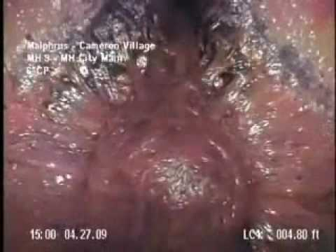 Synth Theme - Malphrus Cameron Village Sewer Blob