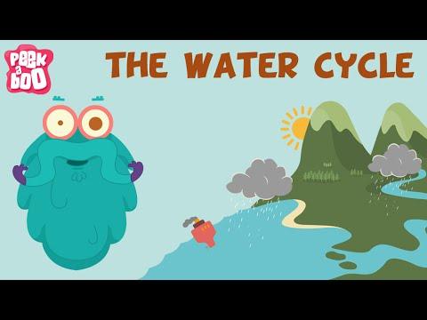The Water Cycle | The Dr. Binocs Show | Learn Series For Kids