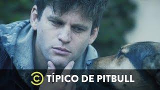 Cuando los perros se quedan solos - Típico de Pitbull de Federico Cyrulnik