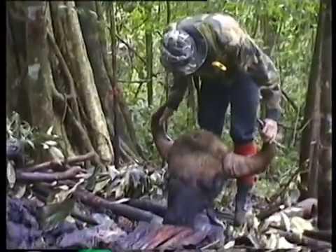 Wildlife Conservation in Thailand รายการส่องโลก ตอน  สัตวป่าไทยกับงานอนุรักษ์
