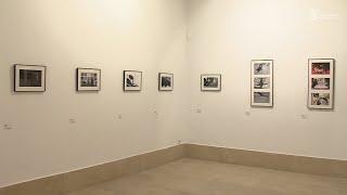 EXPOSICIONES:  29 MARATÓN FOTOGRÁFICO DE CAMARGO Y MIRADAS DE DENTRO AFUERA EN CAMARGO