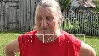 В Бутурлинском районе разворовали деньги выделенные на ремонт павшим воинам