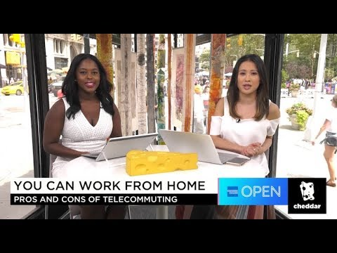 The Pros and Cons of Telecommuting by OPEN Forum