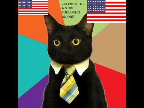 CAT PRESIDENTS!!!???