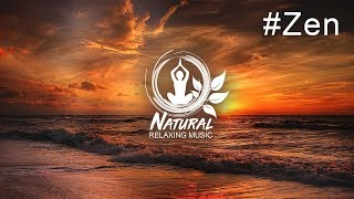 Beautiful relaxing music for stress relief, meditation music sleep music ambient study music