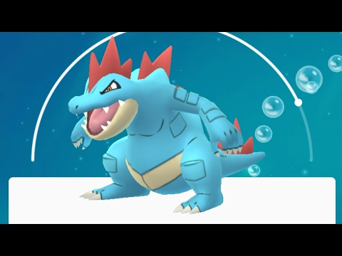 FERALIGATR, Togetic, and more caught in and around Fort Tryon Park 🗽(Livestream Archive)
