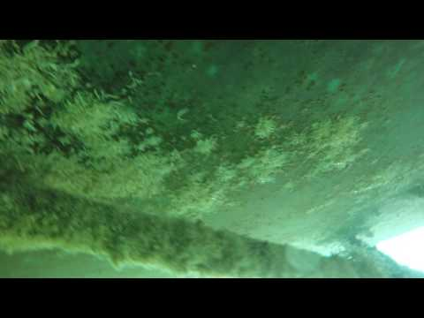 Underwater Hull and prop cleaning LLC bottom not cleaned for 4 to 6 months