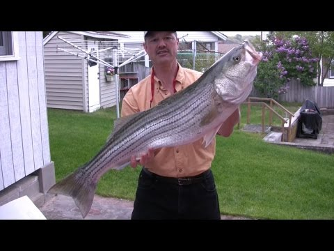 Saltwater Fishing in Cape Cod (Full Length TV Show)