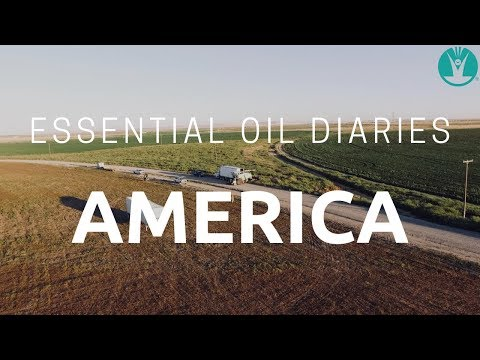 Essential Oil Diaries- America