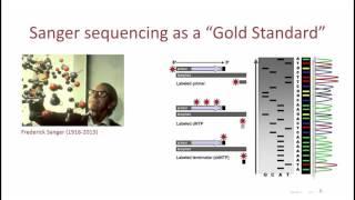 3   1   Основные понятия  Секвенирование по Сэнгеру Basic concepts  Sanger sequencing(, 2015-12-22T23:03:15.000Z)