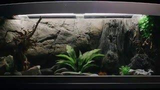 Смотреть видео аквариум под ключ в Киеве