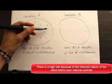 The basic workings of the Audit Risk Model