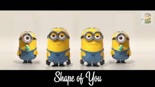 Shape of You/Minion song