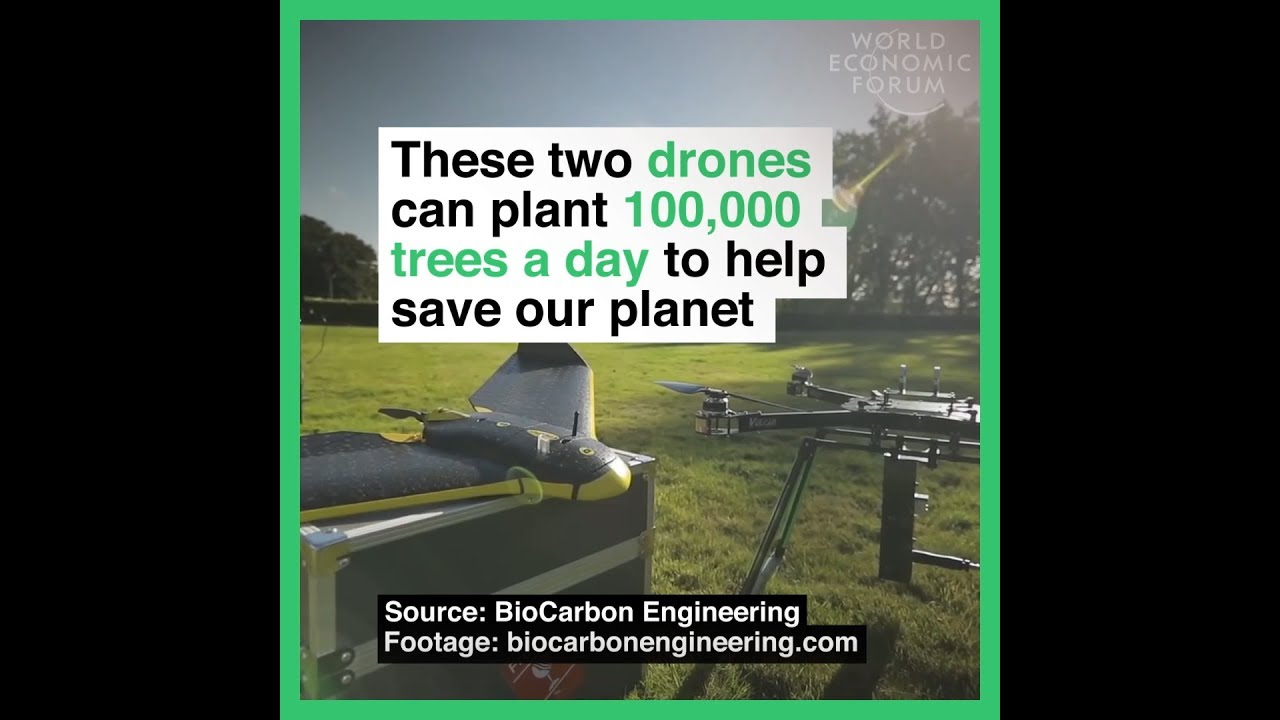 Weird News: These Drones Can Plant 100,000 Trees in One Day