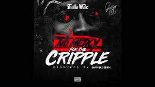 Shatta Wale - No Mercy For The Cripple [Stonebwoy Diss] (Audio Slide)