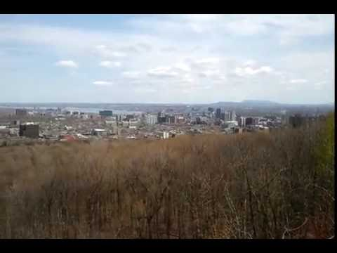 Belvédère Camillien-Houde view looking East