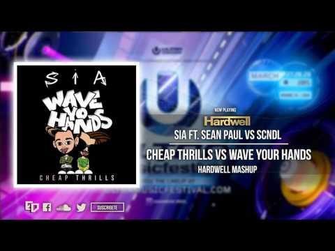 Sia ft. Sean Paul vs. SCNDL - Cheap...