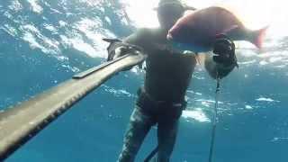 Подводная охота, дайвинг, фридайвинг(Подводная охота, обучение видео. . http://apnos.kiev.ua/. Практика подводной охоты.Речная, морская, океаническая подв..., 2014-12-29T13:05:53.000Z)