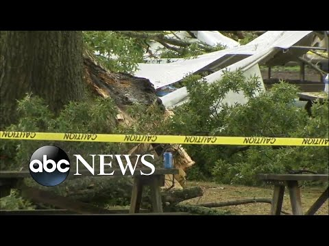 2 adults 7 kids injured after lighting strike l ABC News