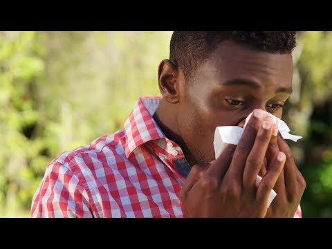 Seasonal Allergies: Which Medication is Right for You?