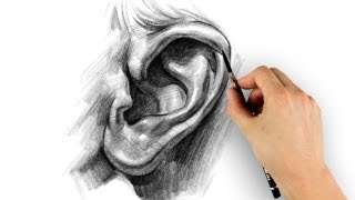 How to Draw Ears - Step by Step