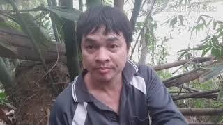 หาหน่อไม้#แรงงานไทยในไต้หวัน #ลูกอิสานหาอยากหากิน