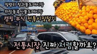 캠핑 부식 전통시장 털기 / 청량리 경동시장 청과물시장…